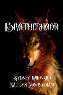 brotherhood book cover