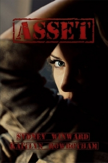 asset book cover