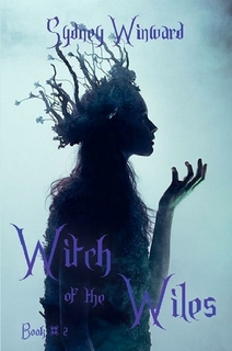 witch of the wiles